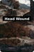 Head Wound reverse side